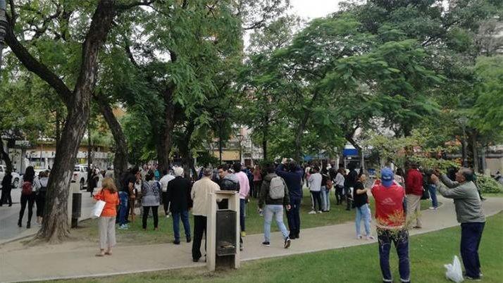 Sorpresa: un animal en vías de extinción apareció en una plaza santiagueña