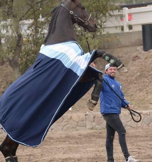 Sol Pérez presentó a su novio, un profesor de equitación