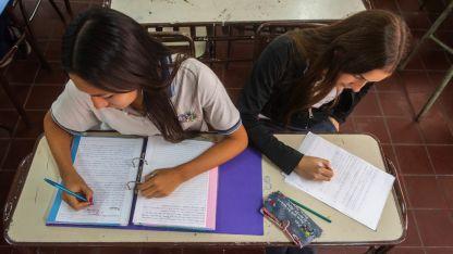 El alumno libre puede ser de primero a cuarto año de escuelas orientadas o a quinto año de escuelas técnicas.