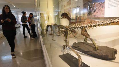 Museo de Ciencias Naturales Juan Cornelio Moyano