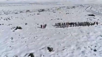 El Ejército Argentino desde la Laguna del Diamante, San Carlos