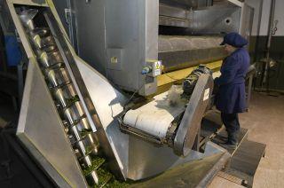 Operativa. La cooperativa produce más de 2000 toneladas de productos deshidratados por año.