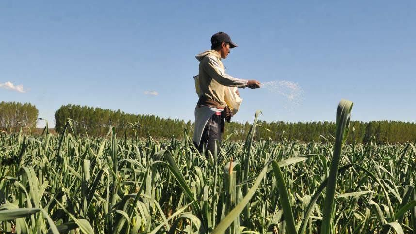 Utilizarán agua de la planta depuradora de San Carlos para regar 120 hectáreas de cultivos